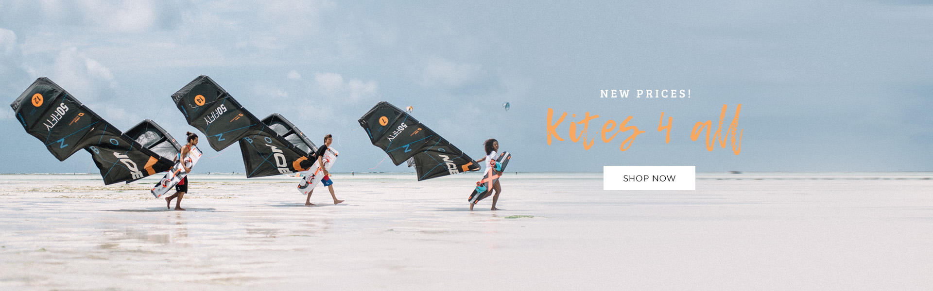 Kite 2017 new price